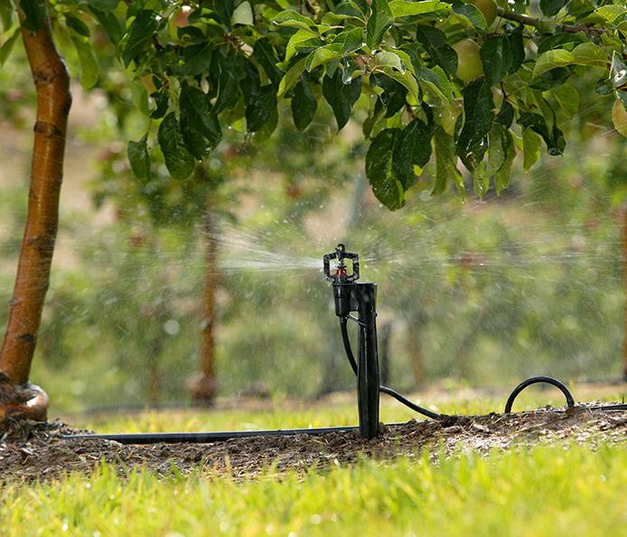 Micro sprinklers irrigation system